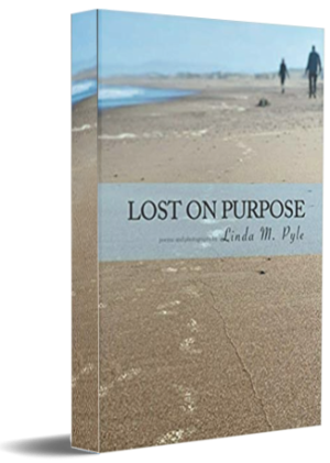 ed book cover with beach on cover